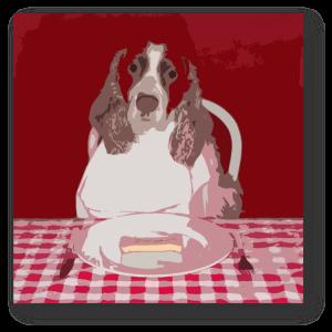 Image Result For Dog Ate Something