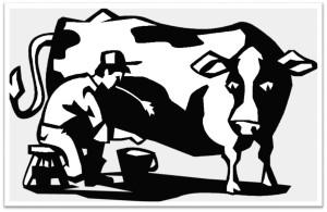 Cow and farmer